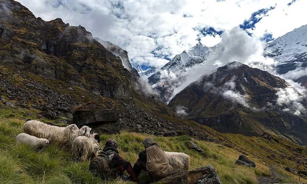 Annapurna Base Camp Trek in July