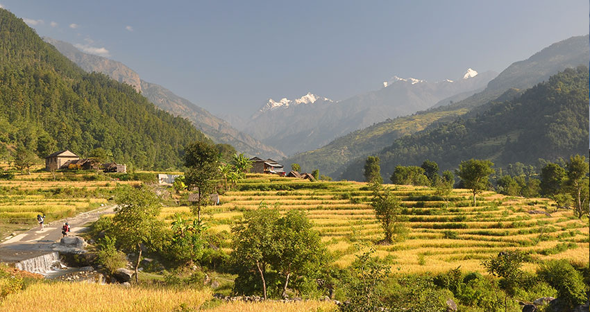 low land of trek to manaslu Region